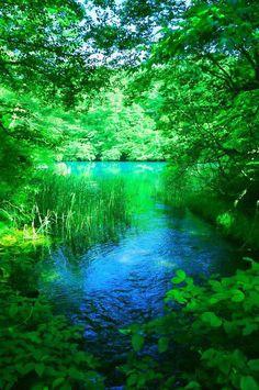 Goshiki-numa, a cluster of five volcanic lakes at the foot of Mount Bandai, Fukushima, Japan 五色沼 << It's so green Beautiful World, Beautiful Places, Beautiful Scenery, Nature Pictures, Amazing Nature, Real Nature, Natural World, Belle Photo, Nice View