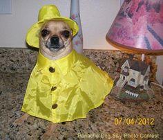 I'm ready for RAIN !