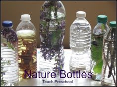Nature Discovery Bottles by Teach Preschool.  Amazing website full of discovery bottle ideas!
