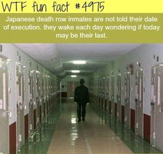 I would die of the anxiety :-o