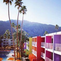 The Saguaro hotel in Palm Springs #saguaro #palmsprings #hotel #travel