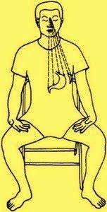 El bazo es el órgano que debemos siempre prestarle atención por sus múltiples funciones. Participa con el estómago en la digestión suminist...