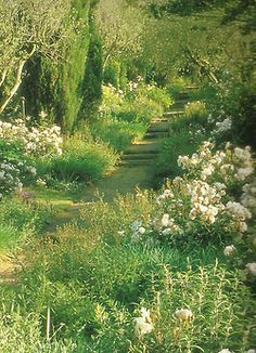 "seabois:    From ""The gardens of Russell Page""  ~ I love the softness of this garden...it looks so effortless."
