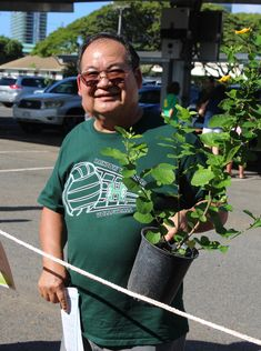 Hawaiian Electric Companies Celebrates Arbor Day! - November 4, 2017: Check out my new plant!