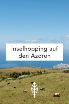 Inselhopping auf den Azoren