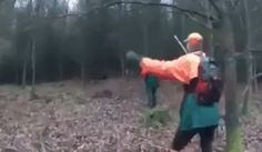 how to dodge a wild boar : gifs