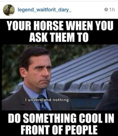 I trained my horse to bow down, and he only does it for me LOL He's good at making me look like a huge liar. ~~~ Haley Boo