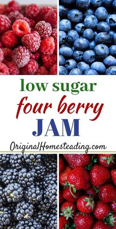 LOW SUGAR FOUR BERRY JAM is my All-Time Favorite! I use less expensive strawberries and blueberries with the more expensive raspberries and blackberries to make a delicious combination of flavors. You may use Fresh or Frozen Berries in any combination. Strawberry Blueberry Jam, Blueberry Freezer Jam, Low Sugar Blackberry Jelly Recipe, Mixed Fruit Jelly Recipe, Triple Berry Jam Recipe, Freezer Jam Recipes, Jelly Recipes, Canning Recipes, Drink Recipes