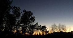 20150127_230959968_iOS ~ Tokay Green Sunset, w/the Evening Star–Venus