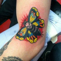 Colorful death moth by Matthew Fragner
