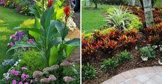 30 imágenes de jardines frontales tan bellos que quitan el hipo ;)