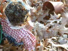 One of my favorite garden pictures, tons of leaves and the Seed Lady... artfromperry