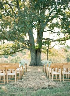 Have a simple quick wedding to start my life