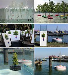 La foresta degli alberi galleggianti