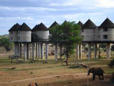 Tsavo East National park, Kenya.  I loved staying here.
