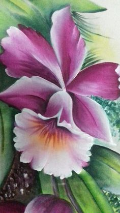 China Painting, Tole Painting, Fabric Painting, Colorful Drawings, Art Drawings, Jar Art, Beautiful Flowers Wallpapers, One Stroke Painting, Expo
