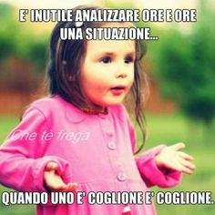 Funny Phrases, Funny Quotes, Verona, I Hate My Life, Truth Hurts, Cheer Up, Wtf Funny, Hilarious, Funny Moments