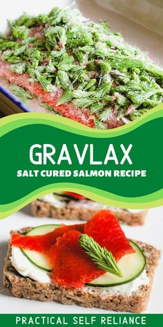 This gravlax recipe is so easy to make. It requires only salt, seasonings, fresh salmon, and a little patience. Gravlax is salmon that has been cured in salt to preserve it. I used young wild balsam fir tips to add a slightly mild flavor, which is much more subtle than smoked salmon. Try gravlax as an appetizer, on a charcuterie or grazing board! Cured Salmon Recipe, Salmon Recipes, Seafood Recipes, Salmon Dishes, Fish Dishes, Gravlax Recipe, Balsam Fir, How To Make Homemade, Smoked Salmon