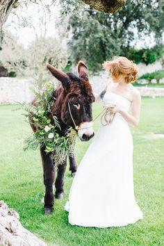 A flowery donkey for a Puglia wedding - Les Amis Photo Grecian Wedding, Formal Wedding, Wedding Styles, Mediterranean Wedding, Lakeside Wedding, Greece Wedding, Wedding Shoot, Wedding Dresses, Friend Wedding