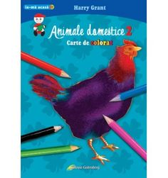 Animale domestice 2 - carte de colorat Parrot, Bird, Parrot Bird, Birds, Parrots