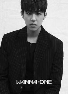 Wanna One 박우진 (Park Woojin) Jinyoung, K Pop, Ong Seongwoo, Lee Daehwi, Produce 101 Season 2, Kim Jaehwan, Ha Sungwoon, Seungri, 3 In One