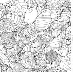Amazon Fantastic Collections A Coloring Book Of Amazing Things Real And Imagined