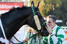 Drama, Presidents, Friendship, Horses, Sports, Animals, Italia, Hs Sports, Animales