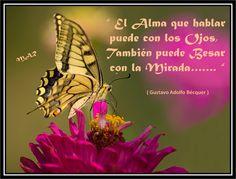 26 Mejores Imágenes De Mensajes Con Mariposas Pretty Quotes