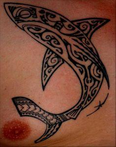 Polynesian Shark