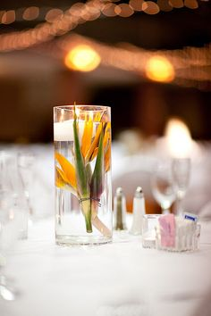 bird of paradise candle centerpiece by The Studio at Cactus Flower, via Flickr