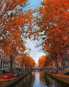 10/3/2015. Autumn at the Groenburgwal in Amsterdam. #amsterdam #historicsites #groenburgwal