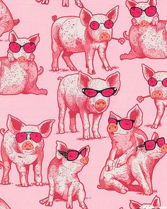 What A Ham - Classy Pigs - Quilt Fabrics from www.eQuilter.com