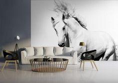 Fototapeta Biały Piękny Koń