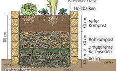Hochbeet im Querschnitt: Achten Sie auf die korrekte Abfolge der einzelnen Schichten