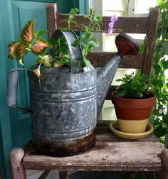 An old rusty watering can makes a beautiful container for plants!