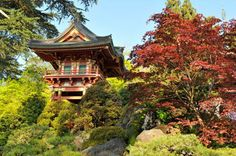 The Temple Gate in the Japanese Tea Garden was developed for the 1894 California Midwinter International Exposition. San Francisco Attractions, San Francisco Tours, Japanese Plants, Japanese Gardens, Gate Pictures, Stepping Stone Paths, Utah Camping, Stone Lantern, Traditional Japanese Art