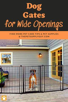 Best Dog Gates for Wide Openings (Buying Guide) >> LEARN MORE @ ThePetSupplyGuy.com << #thepetsupplyguy #pet #pets #animal #dog #dogs #puppy #puppies Outdoor Pet Gate, Outdoor Decor, Pet Care Tips, Dog Care, Extra Wide Dog Gates, Large Dogs, Small Dogs, Retractable Dog Gate, Freestanding Dog Gate