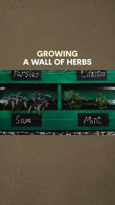 A great project using a pallet to grow a wonderful, classy herb garden! Love Garden, Herb Garden, Urban Gardening, Diy Garden Decor, Small Gardens, Garden Inspiration, How To Plan, How To Make, Pallet