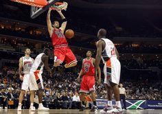 Brad Miller Pictures - Chicago Bulls v Charlotte Bobcats - Zimbio