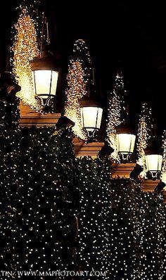 "A very Happy Holiday Season and Thank You to all my wonderful ""Christmas Around the World"" Followers ~ Cinda   (Magdalena Martin, Paris photographer, Paris)"