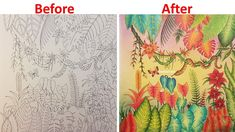 Speed Coloring   The Jungle   MAGICAL JUNGLE by Johanna Basford