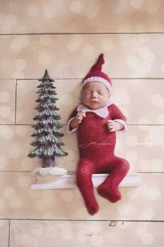 Newborn photos elf on the shelf Christmas newborn photo