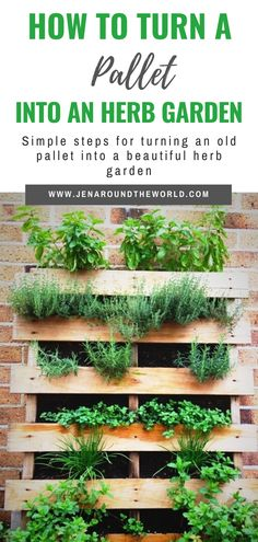 Creating an herb garden from leftover materials is not only genius, but it will also help you to green your lifestyle a bit by recycling. So how do you turn an old pallet into an herb garden? Here are my simple and easy instructions. Herb Garden Pallet, Diy Herb Garden, Olive Garden, Vegetable Garden Design, Pallets Garden, Garden Beds, Pallet Gardening, Palette Herb Garden, Vertical Pallet Garden