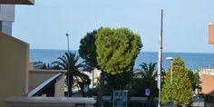 Vacanze al Mare ad Alba Adriatica #mare #beach #sole #estate #summer #vacanze #vacanza #holiday #vacation #costa #riviera #albaadriatica #abruzzo #italia #visititalia #visititaly #viaggio #viaggi #viaggiare #travel #traveller #viaggiatore #trip #spiaggia #spiagge #instatravel #travelling Alba, Estate, Wind Turbine, Costa, Plants, Planters, Plant, Planting