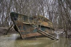 Ghost ship in a creek near Cincinnati off the Ohio river. The Circle Line V was launched on April 12, 1902 as the Celt and had a long and interesting history before being grounded in the creek off its final owner's property in 1986. It rots there to this day.