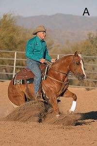 How to Evaluate a Horse's Reining Potential- Al Dunning