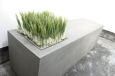 beton pflanzkübel gartenideen