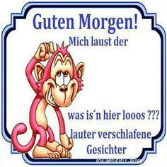guten morgen - http://guten-morgen-bilder.de/bilder/guten-morgen-318/