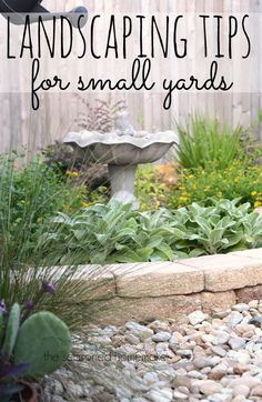 Landscaping Tips for Small Yards Small Yard Landscaping: Small yards are a unique landscaping dilemma. Overgrown plants can overwhelm a small setting. I have 6 Landscaping Tips for Small Yards that will make Landscaping Easy. Small Yard Landscaping, Backyard Ideas For Small Yards, Small Backyard Gardens, Landscaping Tips, Small Gardens, Outdoor Gardens, Landscaping Software, Nice Backyard, Landscaping Contractors