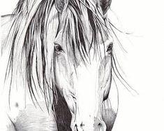 Artículos similares a Vendido-reservado para Cynthia-Original caballo dibujo a carboncillo de 'Pasión desenfrenada' en Etsy Rodeo, Etsy, Drawings, Prints, Anime, Drawings Of Horses, The Originals, Hand Made, Sketches